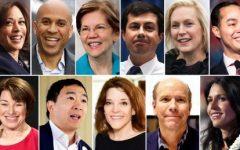 Democrats for 2020